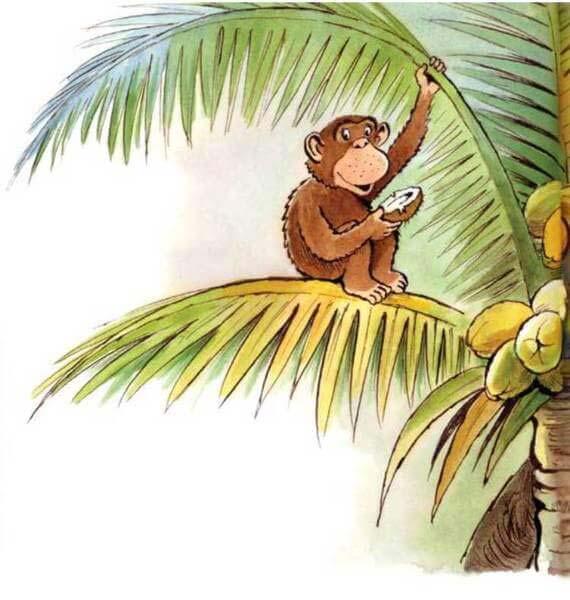 con khỉ và người đánh cá 1