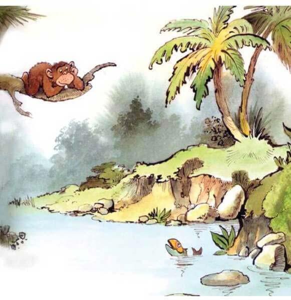 con khỉ và người đánh cá 4