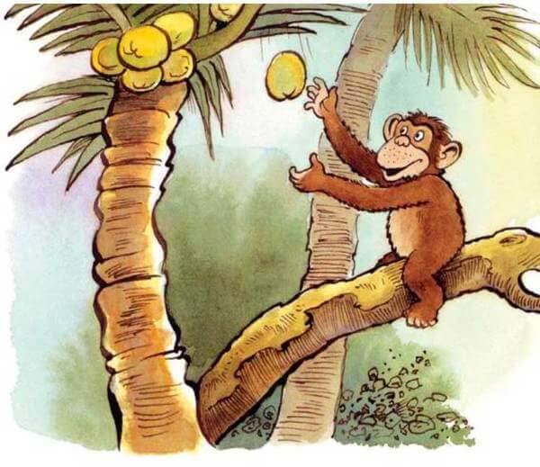 con khỉ và người đánh cá 15