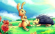 Chú thỏ và núi củ cải
