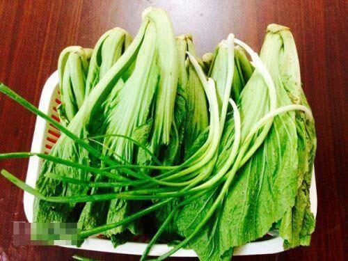 dưa cải xanh