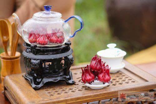trà atiso đỏ