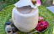 Cách làm thạch dừa xiêm thơm ngon và vô cùng dễ làm tại nhà