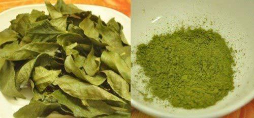 Lá trà xanh sau khi đã rửa sạch và phơi khô