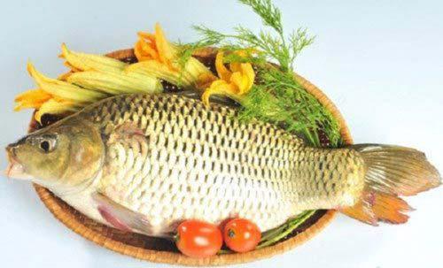 Image result for cá chép