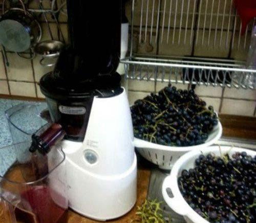 Ép nho bằng máy ép hoa quả