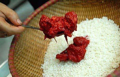 Trộn gạo nếp và thịt gấc