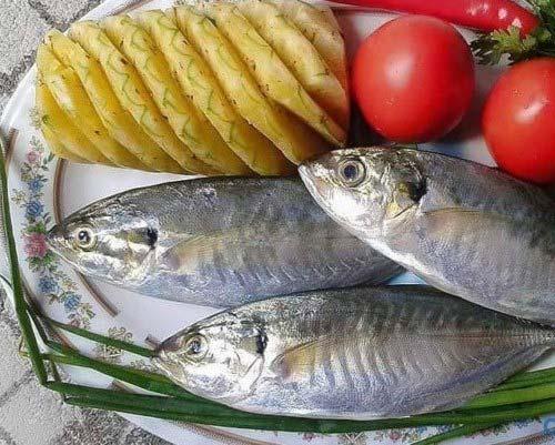 Nguyên liệu kho cá biển