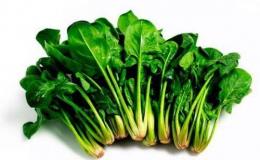 Rau chân vịt là rau gì và có tốt cho sức khỏe không?