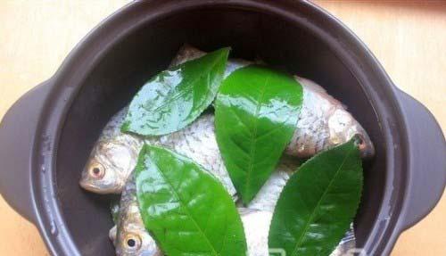 Xếp cá diếc và lá trà xanh