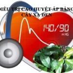 Cây xạ đen và bệnh cao huyết áp