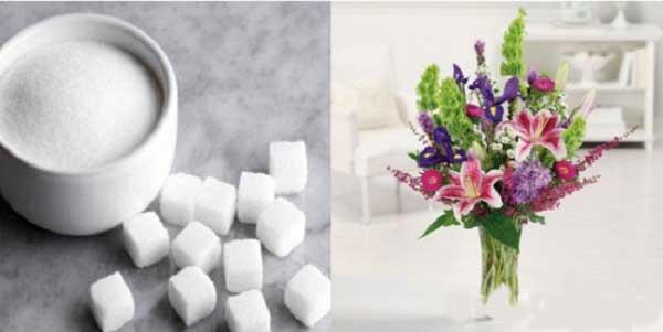 Cho thêm đường vào nước cắm hoa