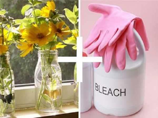 Dùng thuốc tẩy cho vào bình hoa