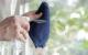 10 mẹo làm sạch cửa kính đơn giản, nhanh chóng