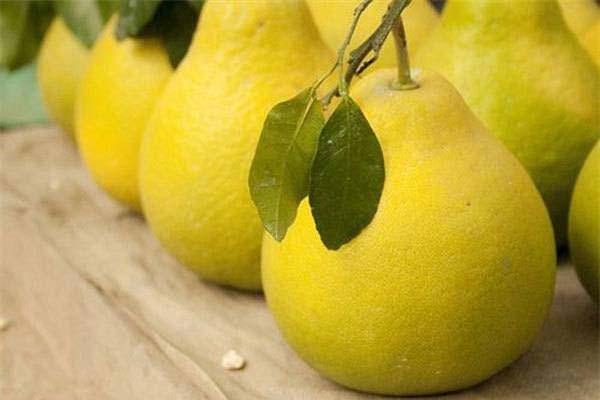 Mẹo giữ hoa quả tươi ngon và bảo quản được lâu