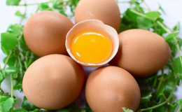Trứng gà có tác dụng gì? Những lợi ích tuyệt vời của trứng gà