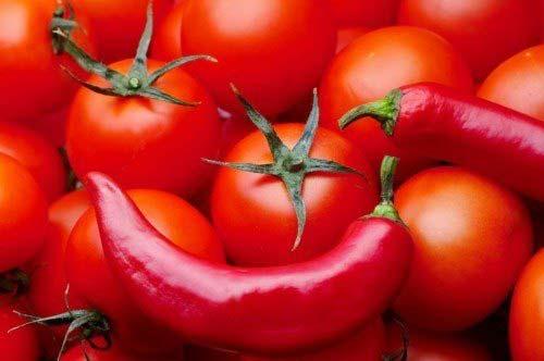 Ớt và cà chua