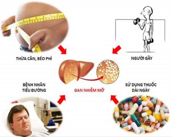Một số tác nhân gây hại cho gan