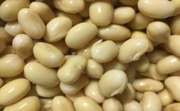 Những thực phẩm mọc mầm không độc mà còn tốt cho sức khỏe