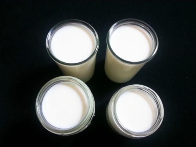 Ủ sữa chua dẻo
