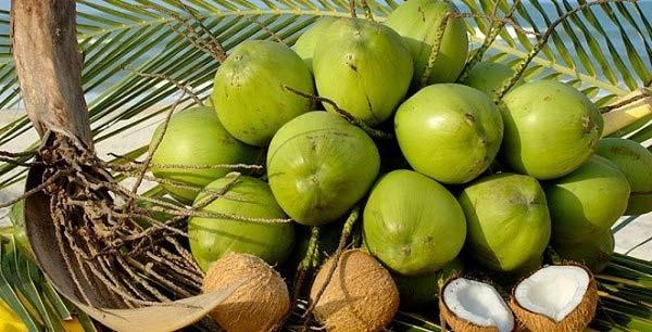 Sườn kho nước dừa