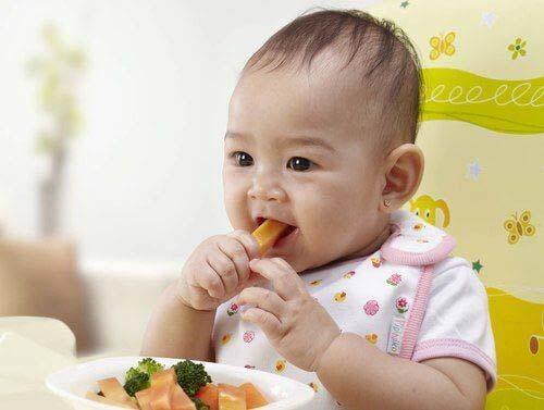 Cho trẻ ăn dặm đúng cách