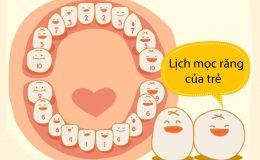 Lịch mọc răng sữa của trẻ và cách chăm sóc răng miệng cho trẻ